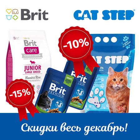 Акция на Brit