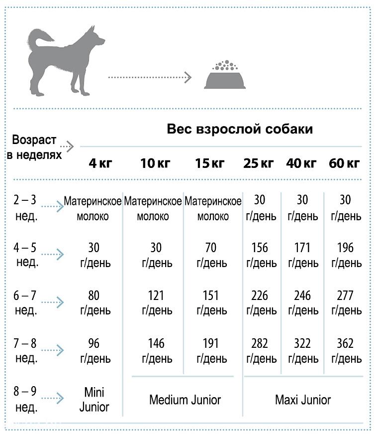 Нормы кормления Nature's Protection Puppy Starter
