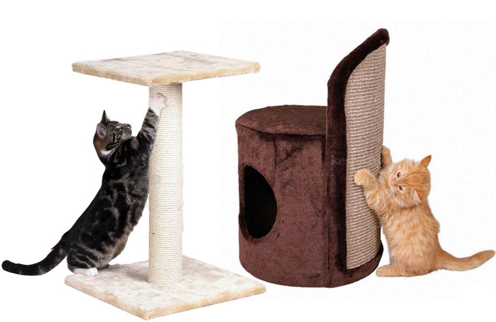 Коты на когтеточке