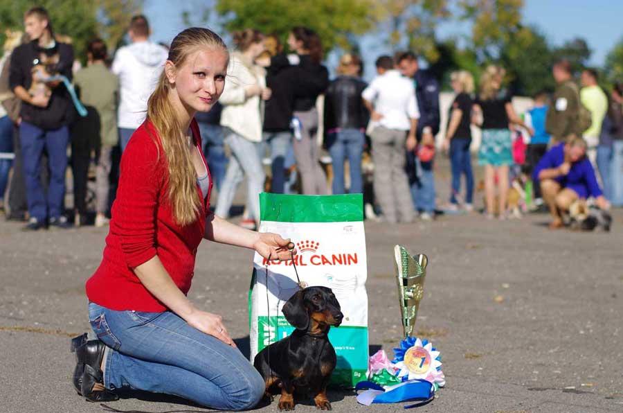 Выставка собак в Бресте 2018 ст. Локомотив