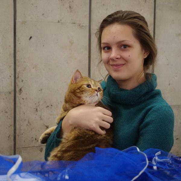 Выставка кошек в Бресте В гостях у сказки
