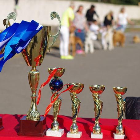 Выставка собак Берестейская осень 2016